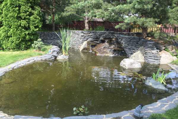 Аэраторы для пруда и аквариума: устройство и преимущества использования, обзор видов