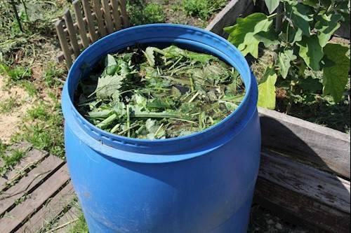 Удобрение из зеленой травы и воды — простая подкормка для растений
