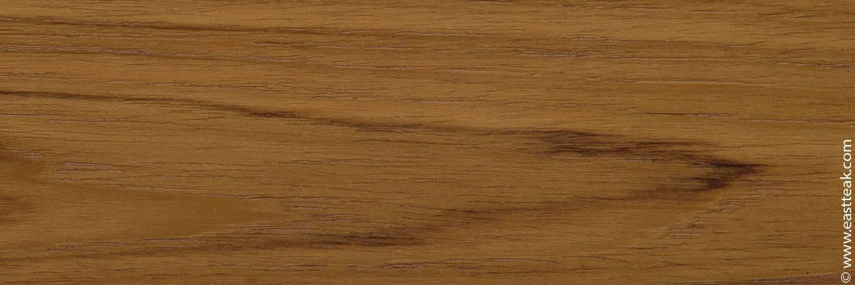 Лиственница сибирская – таежная целительница