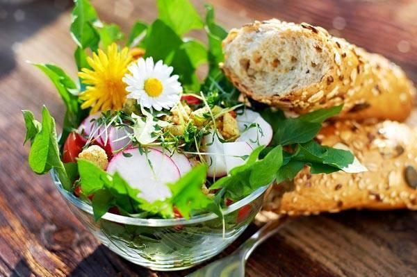 Сорняки на даче — польза для урожая и для нашего здоровья