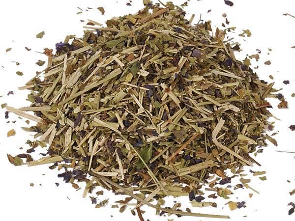 Вероника лекарственная (трава) — описание, лечебные свойства, применение