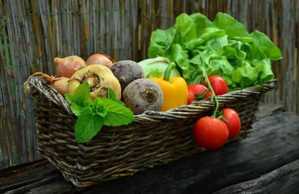 Cевооборот овощных культур на дачном участке