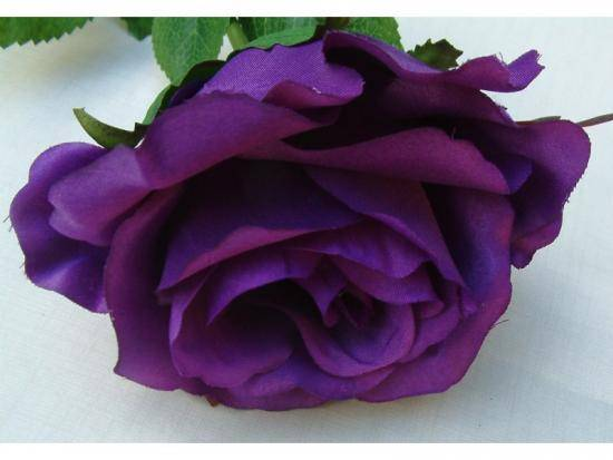 48 красивых сортов роз розового цвета с названиями и фото