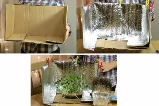 Светильник для растений – лучшие конструкции, особенности подбора и варианты установки (80 фото)