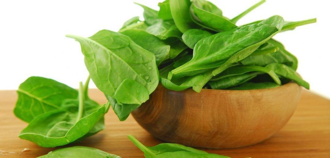 Шпинат — полезная зелень
