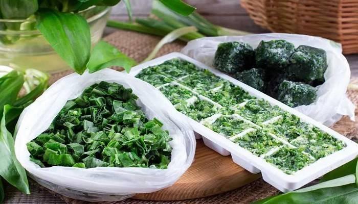 Как вкусно замариновать черемшу в домашних условиях: простые рецепты + что из нее можно приготовить