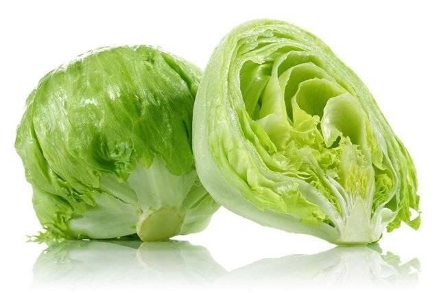 Посадка салата в 2020 году: сроки посева, выращивание и уход