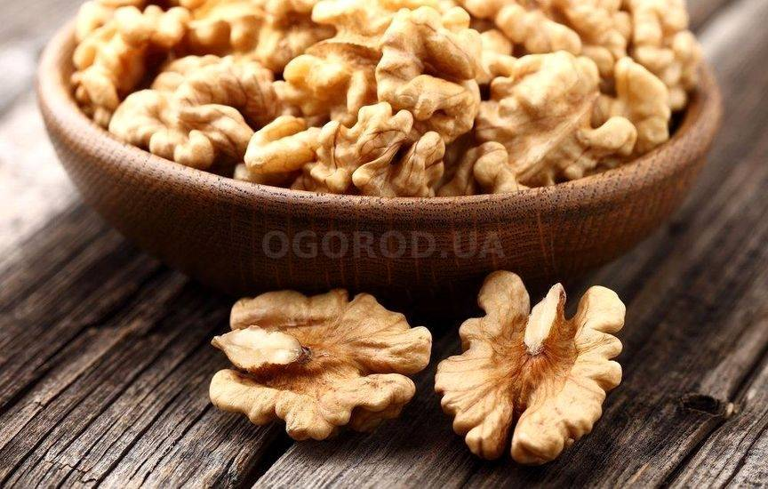 Орехи арахис: польза для организма и вред