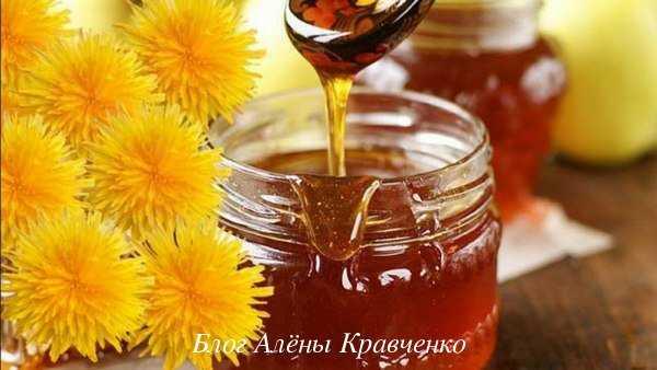 Мед из одуванчиков: польза и рецепт приготовления в домашних условиях