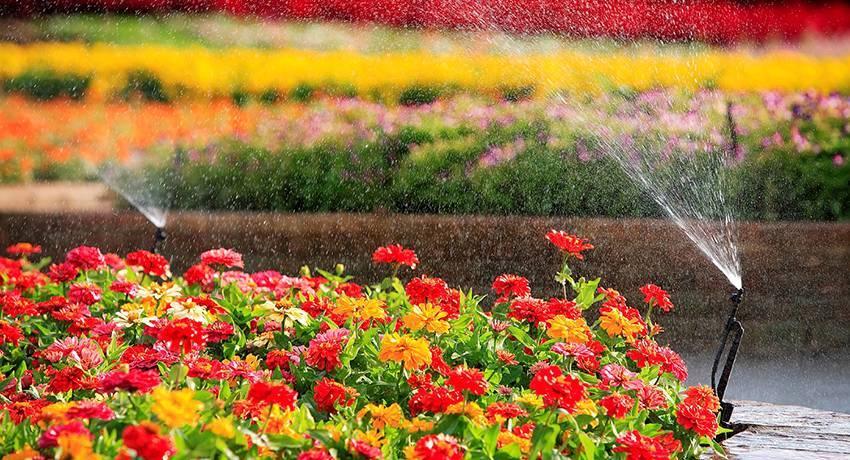 Системы орошения: для газона своими руками, виды для теплиц, устройство, монтаж, фото, видео