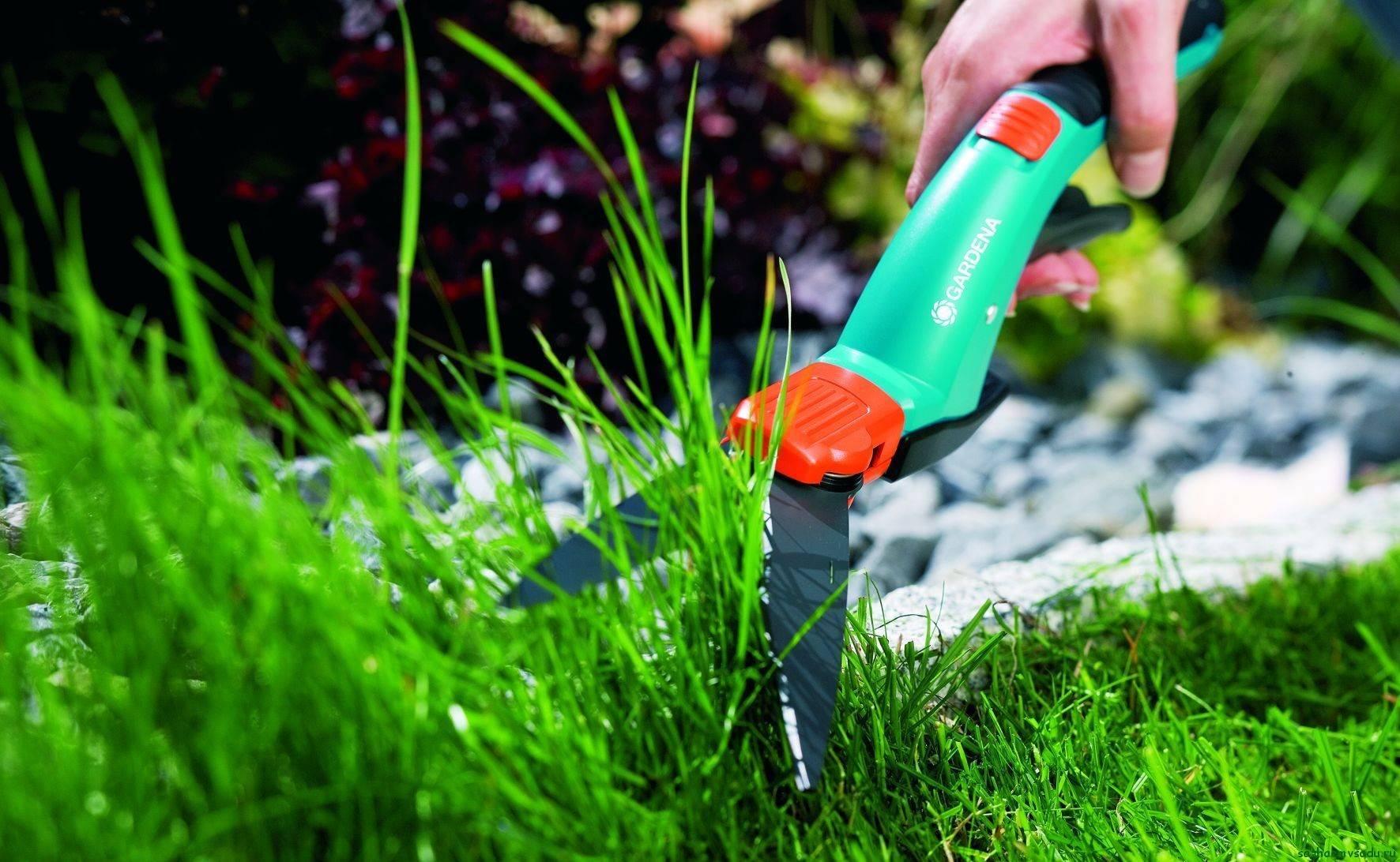 Уход за газоном: готовим почву, сеем, удобряем и стрижем