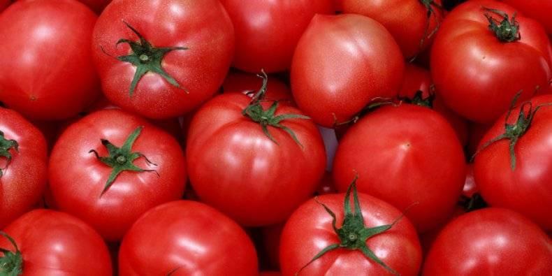 Уникальный томат перцевидный на грядках дачника