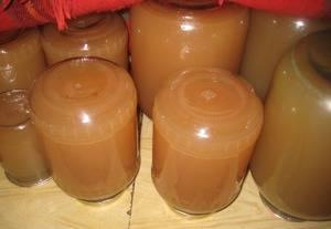 Как сделать сок из свежих слив. сок из ароматной сливы на долгую зиму в соковарке. процесс приготовления сливового сока в домашних условиях требует немало физических усилий