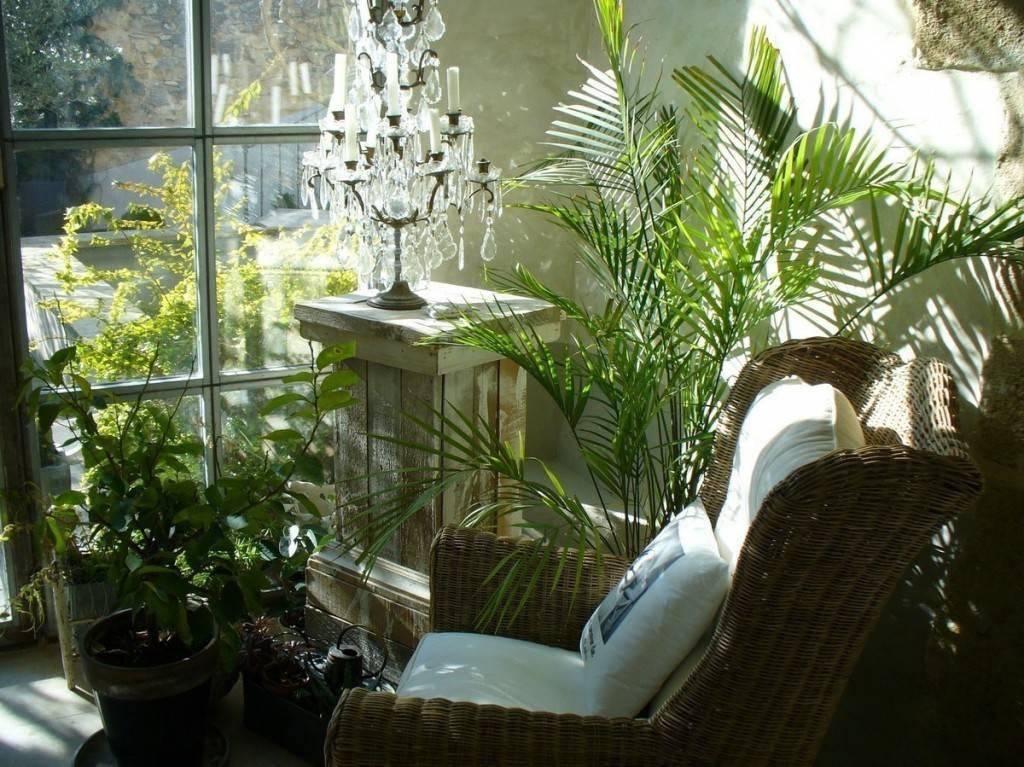 Как устроить зимний сад