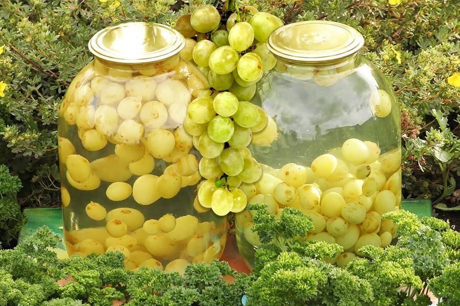 Лучшие рецепты компотов из винограда