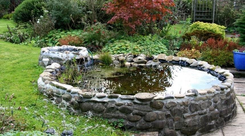 Водоем своими руками на дачном участке: подробное описание постройки декоративного водоема, варианты дизайна и оформления (110 фото и видео)