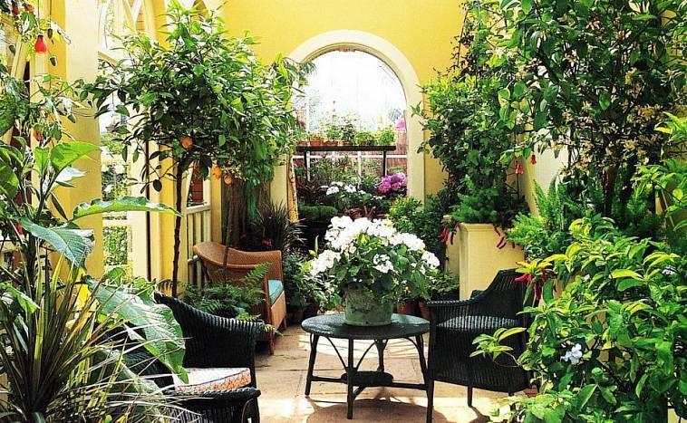 Зимний сад в квартире своими руками: создай себе оазис сам