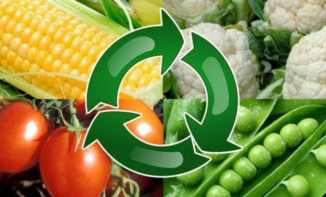 8 способов повысить плодородие почвы