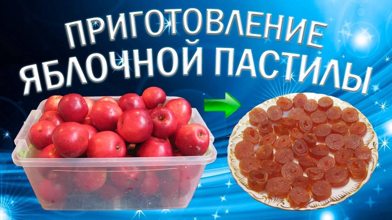 Как приготовить цукаты из абрикосов в домашних условиях по пошаговому рецепту с фото