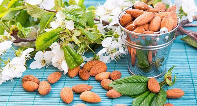 Масло авокадо: свойства и применение, сосав, рецепты