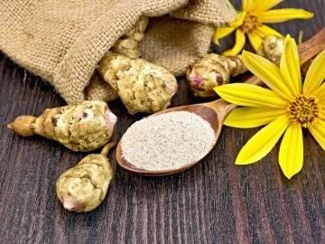 Топинамбур: полезные свойства и противопоказания, рецепты приготовления