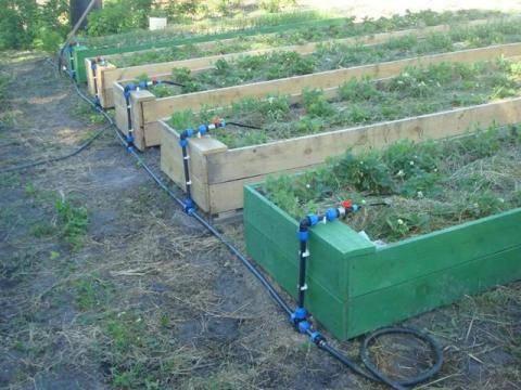 Приспособления для огорода сделанные своими руками