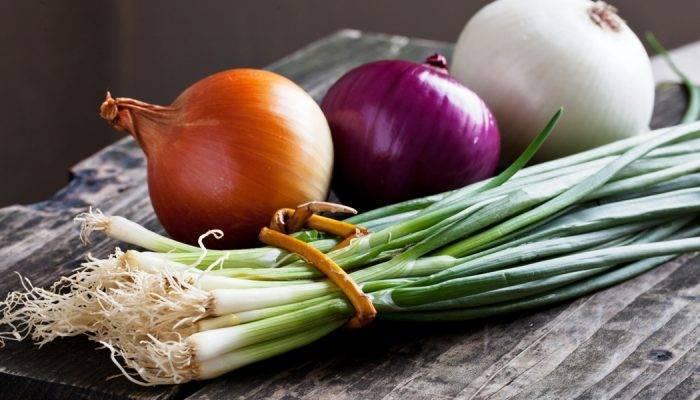 Лук-слизун — в чем польза, как выращивать, рецепты блюд