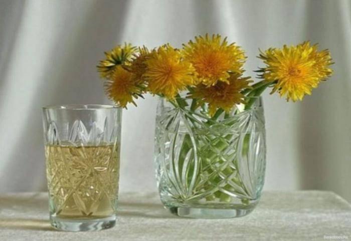 Настойка одуванчика на водке применение при болезнях