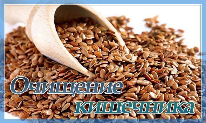 Как использовать семена льна для похудения — простые и эффективные рецепты