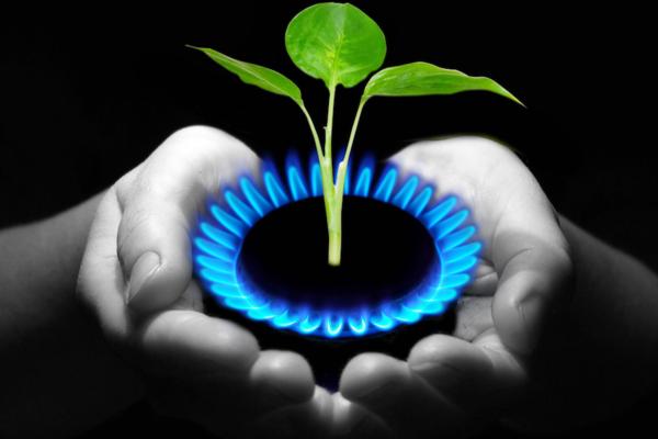 Как получить биогаз из навоза: технология и устройство установки по производству