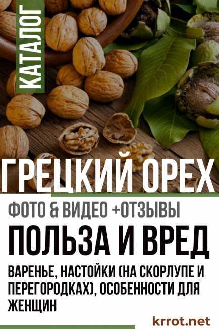 Как приготовить варенье из зеленых грецких орехов — пошаговые рецепты с фото