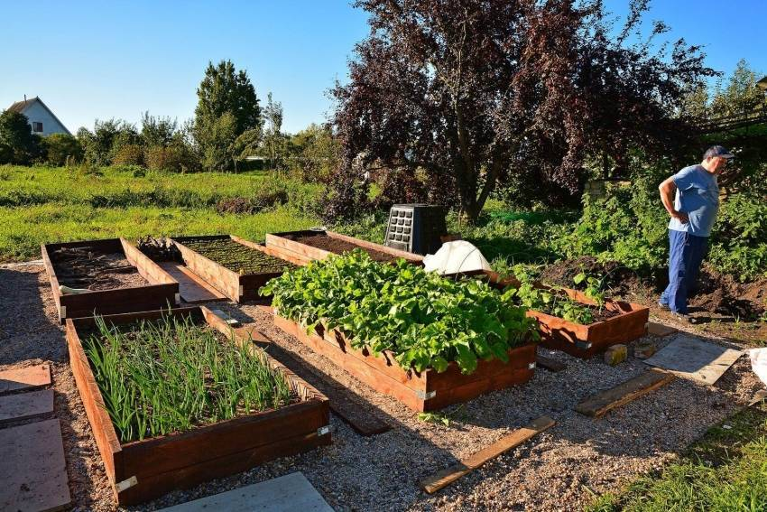Возможно ли сделать огород на крыше?