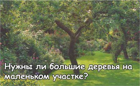 Ваш сад и огород без химии, использование природных средств, культур спутников, видео