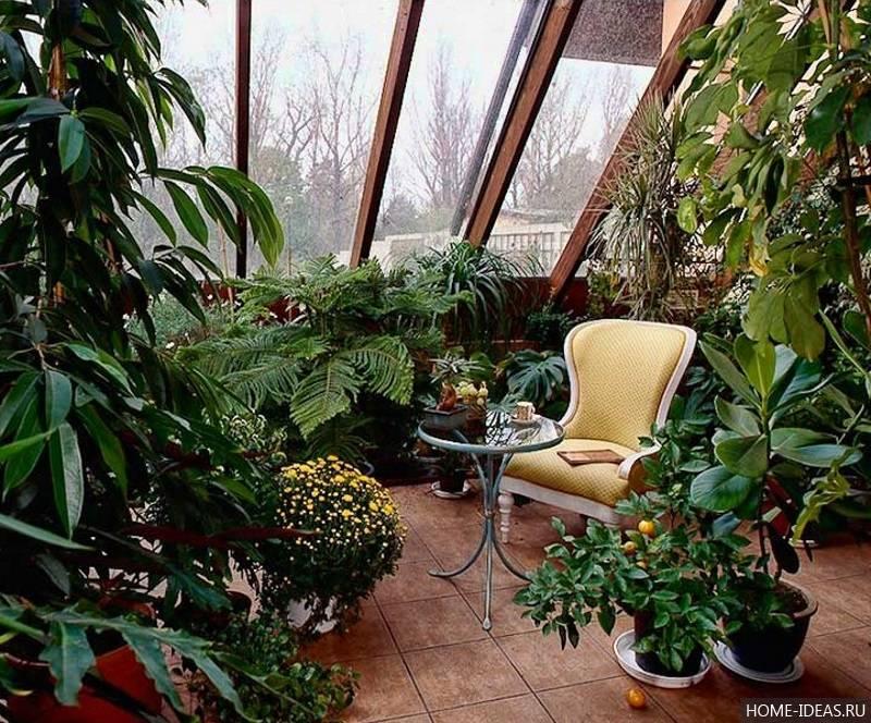 Зимний сад в квартире — 35 фото идей