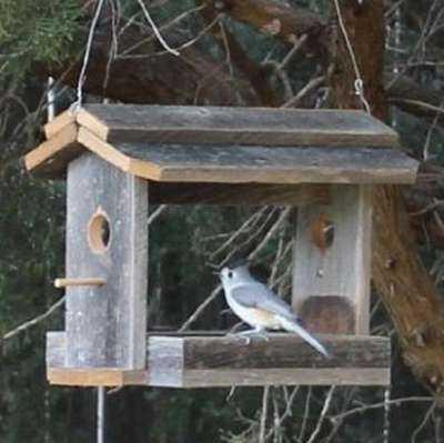 Такие разные и необычные кормушки для птиц в вашем саду