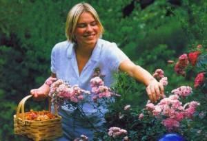 Правила ухода за розами весной