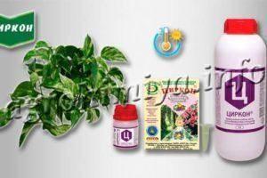 """Стимулятор роста растений """"эпин"""": инструкция по применению, характеристики, отзывы"""