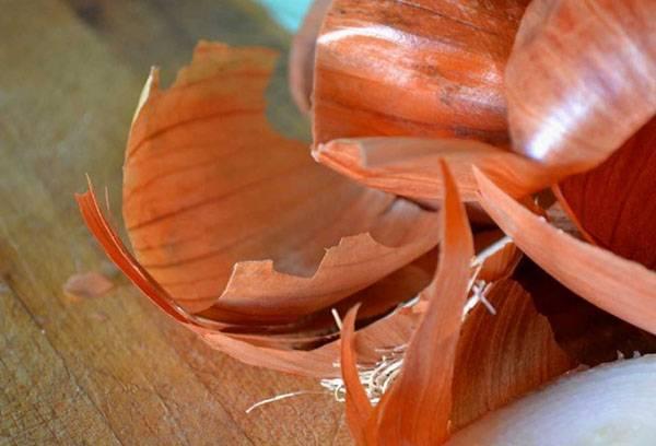 Шелуха лука в народной медицине, полезные свойства