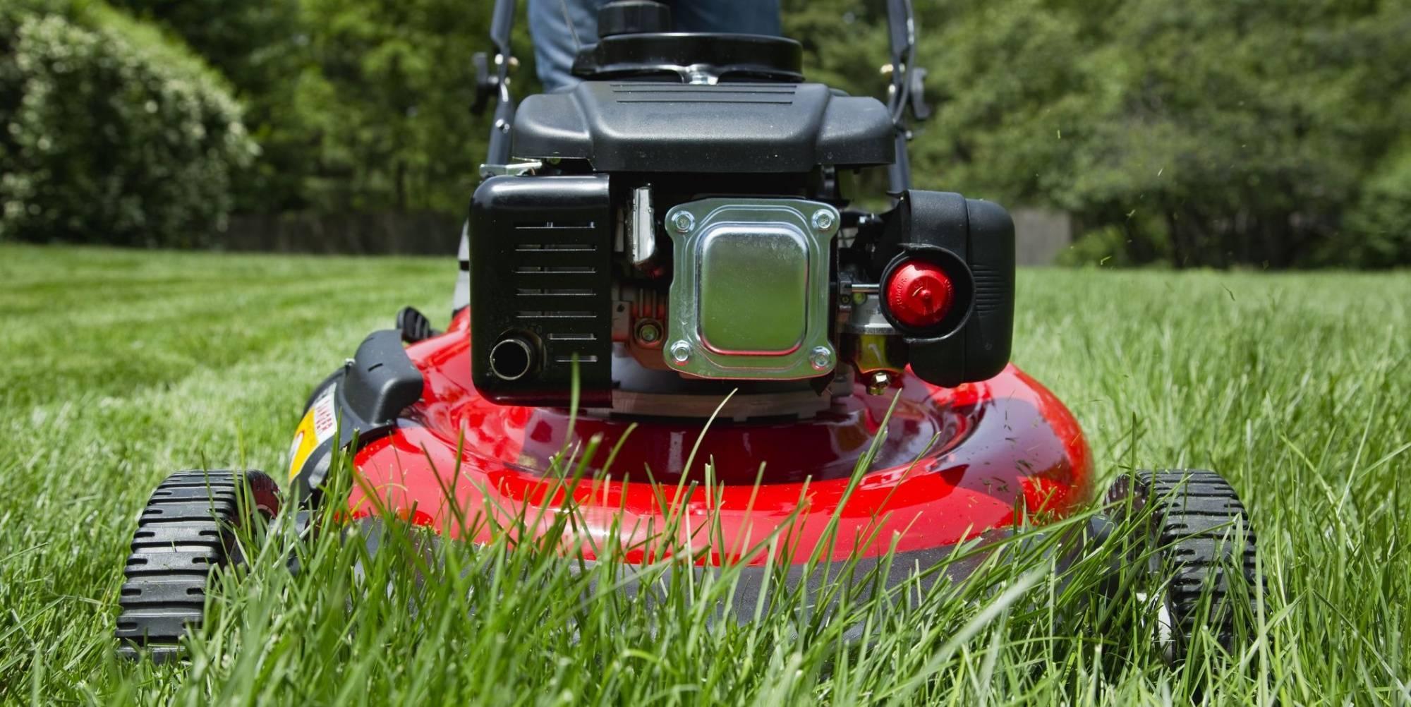 Выбор аккумуляторных ножниц для травы: плюсы и минусы, обзор моделей