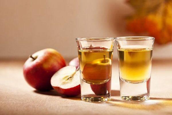 «пейте уксус, господа!» секреты приготовления яблочного уксуса