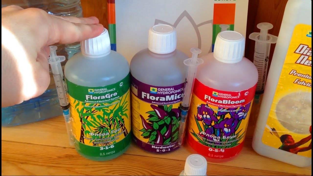 Как выращивать огурцы в гидропонике