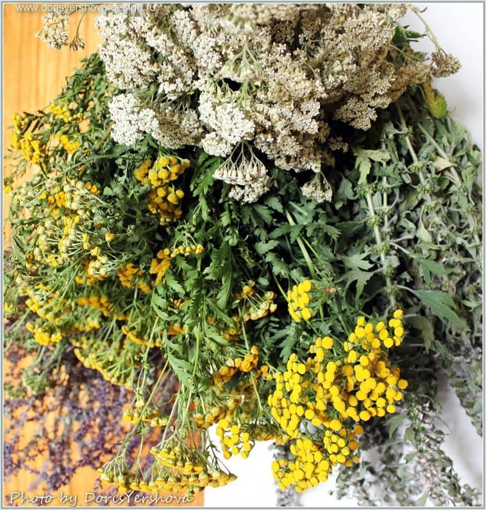 Как выбрать качественные семена овощей и зелени?